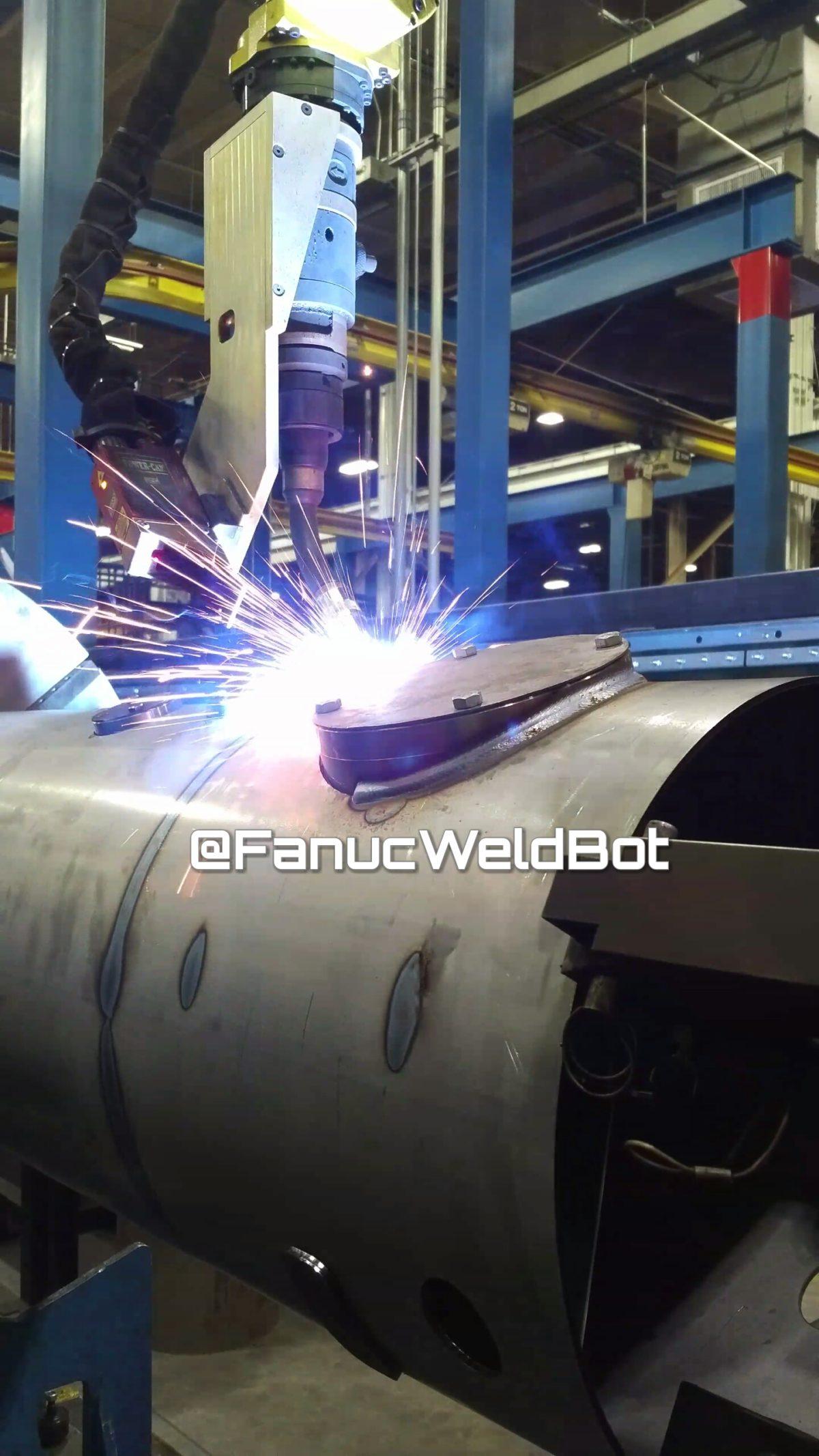 servo robot with fanuc robot